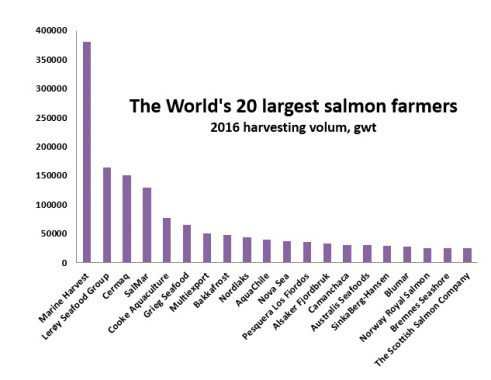 These are the world's 20 largest salmon producers
